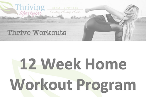 12 Week Home Workout Program