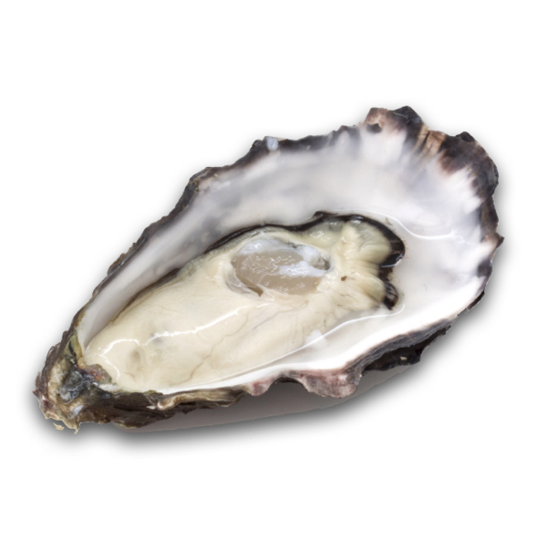 French Kiss Oyster