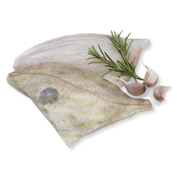 John Dory Fish Fillet