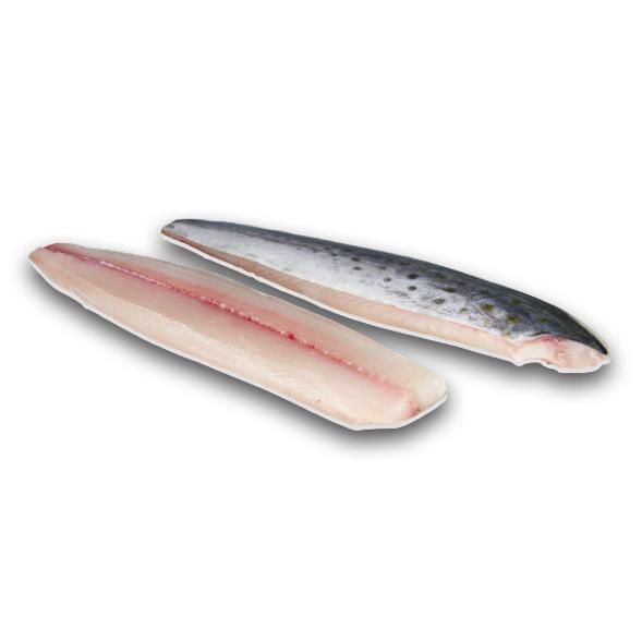 Frozen Mackerel Filet.001