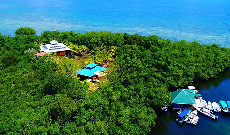 Private Island with House, Restaurant/Bar and Yoga Platform