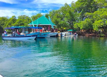 Private Island w/House, Rest/Bar/Yoga in Bocas del Toro, Panama