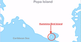 Humming Bird Island.png