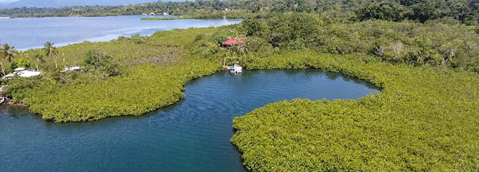 Titled Property in Bocas del Toro