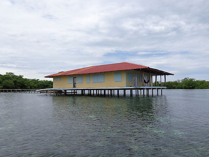 Large 9 acres Island surrounded with coral reef, in Bocas del Toro