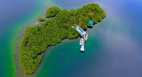 Île Tropicale avec 2 maisons pour emménager et plage privée