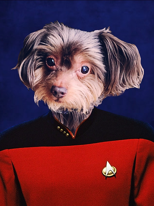 Star Trek Portrait