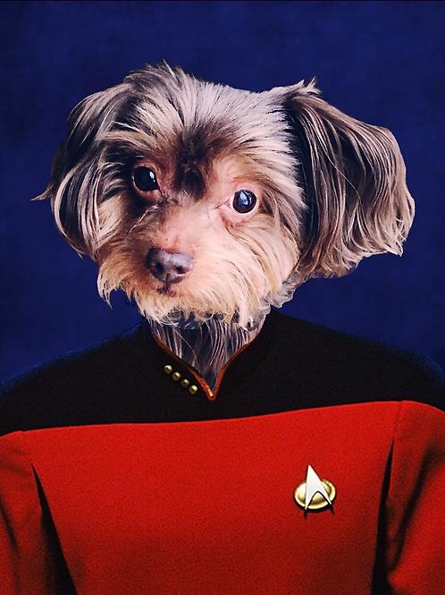 Star Trek Portrait