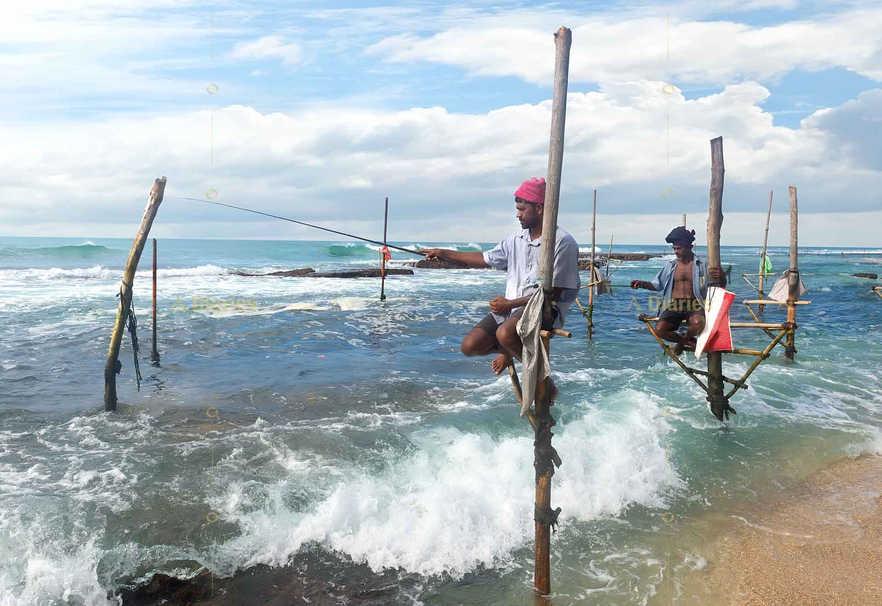 Stilt Fisherman in Weligama