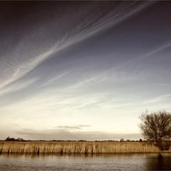 Martham Landscape
