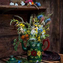 Medley of wild flowers