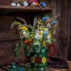 Medley of wild flowers.jpg