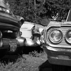 Mono cars.jpg