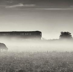 Marsh Train (L dolan theme trains).jpg