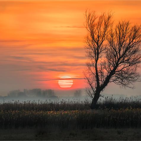 Ludham marsh sunset
