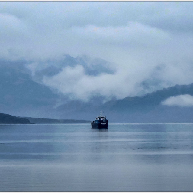 Into the Blue Mist