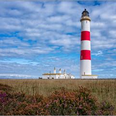 Tarbut Lighthouse.jpg