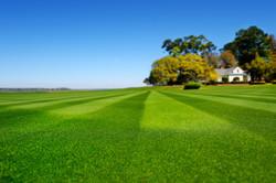 GrassMasters