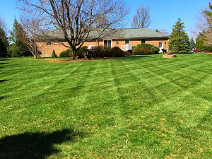 Lawn Care for Residential Property