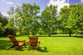 Two chairs on green lawn