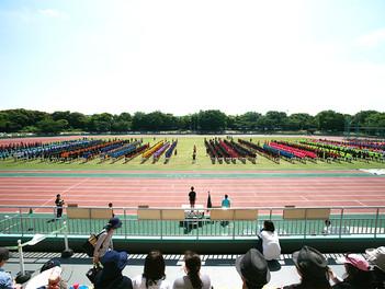 平成29年度 高校体育祭が行われました