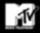 mtv-hits-logo-png-transparent_edited.png