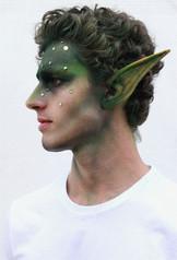 Elf prosthetics