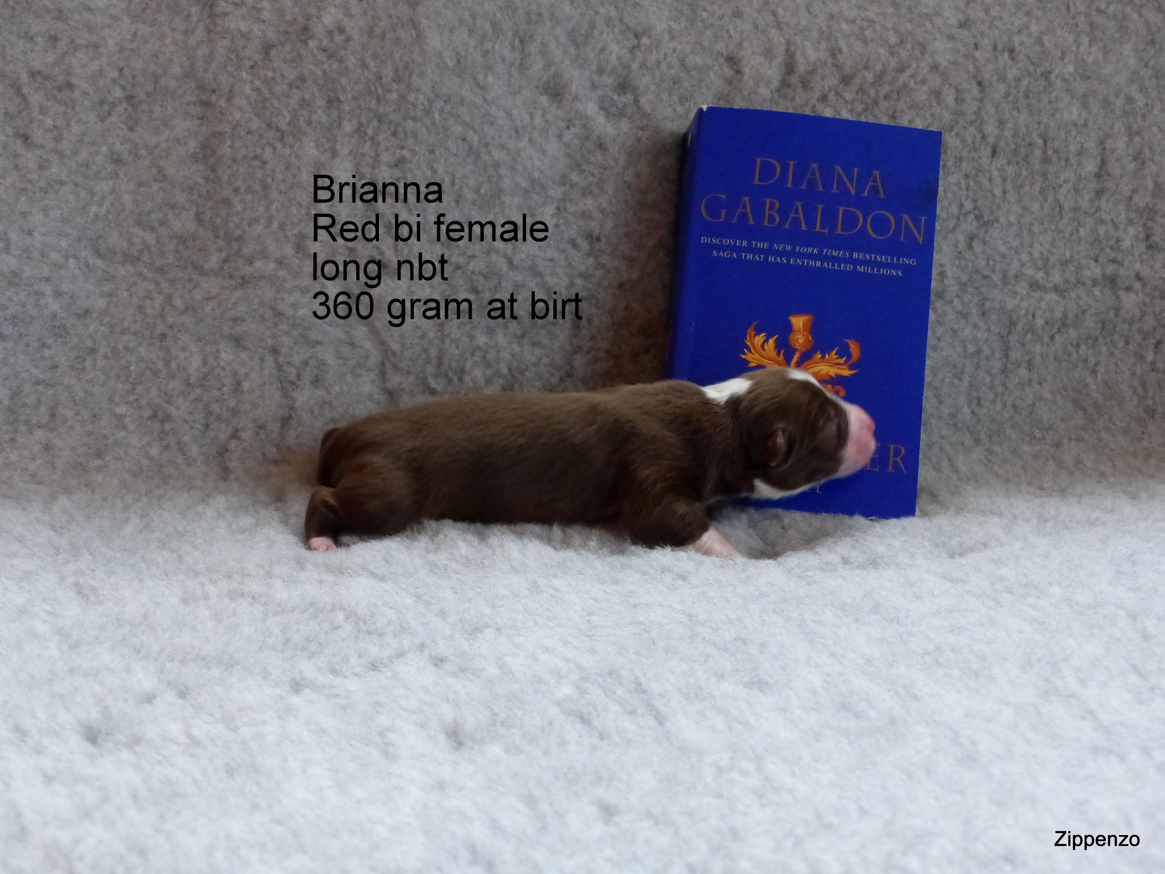 Brianna 1.Tag