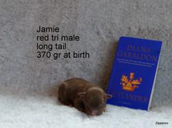 Jamie 1.Tag