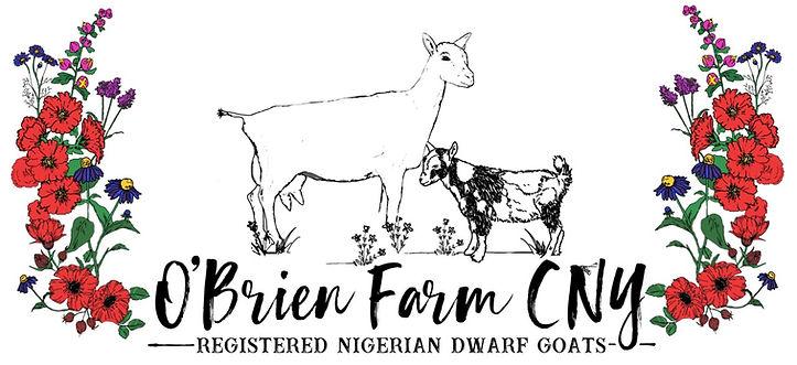 O'Brien Farm CNY