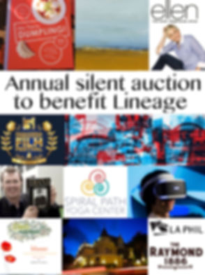 silent-auction-teaser-1.jpg