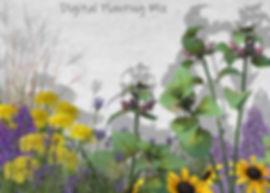 Digital Planting Mix .jpg