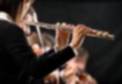 Flute 65852957.jpeg