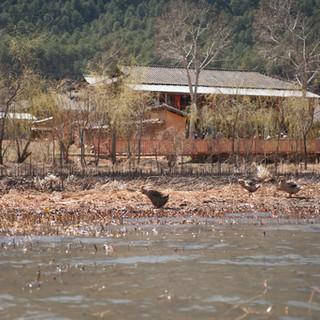 Yunnan 09