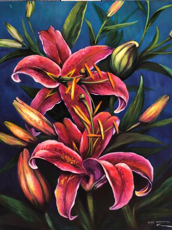 Rubrum Lily