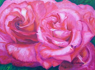 Dos Roses