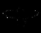 Raven-Logo.png