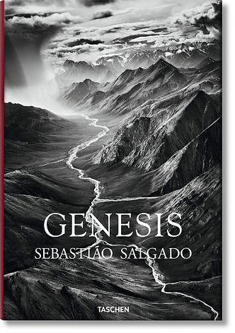 genesis sebastiao salgado.jpg