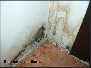 Remontés_capillaires_.png