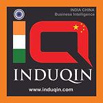 INDOQIN logo.jpg