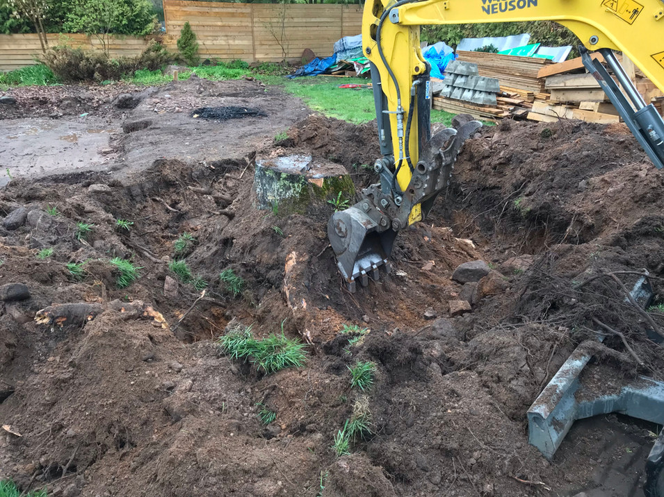 removing tree stump that is in the way of the new pool.