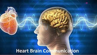 Heart Brain Commo.jpg