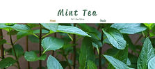 Mint Tea website cover image opens to Mint Tea website with creative nonfiction essay Oasis by Y. Hope Osborn