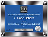 Best in Show Certificate for Fusion Arts 6th Annual Colorful Abstractions photo Cosmos