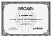 Monovisions Honorable Mention Nature and Landscape Series Certificate