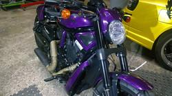 Purple VRod2