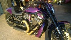 Purple VRod3