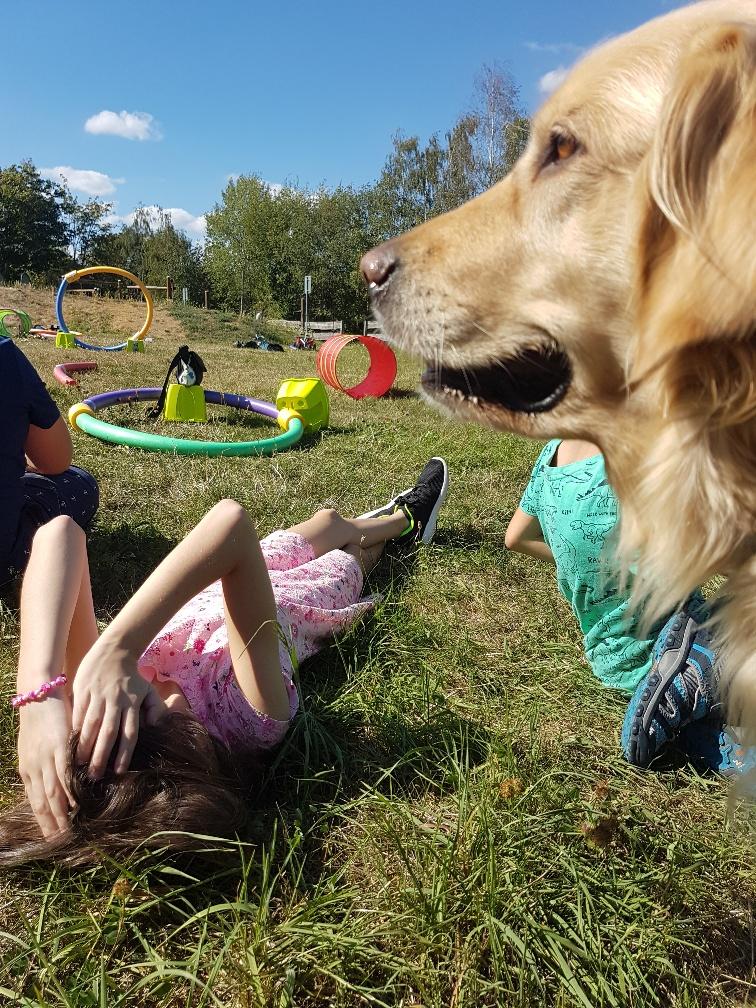 Schulhund Pippa