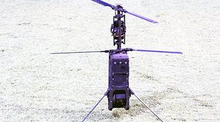 SPIKE-FIREFLY-1-800x445.jpg