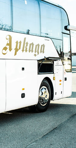 Аркада - советск пассажирские перевозки
